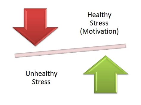 Effects of stress and anxiety-related disorders on the